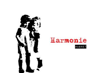 Harmoniemagnet