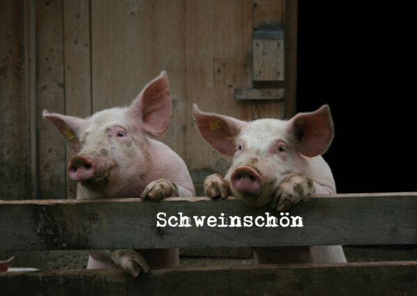 Schweinschön